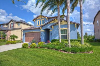 Wesley Chapel Single Family Home For Sale: 29016 Perilli Place