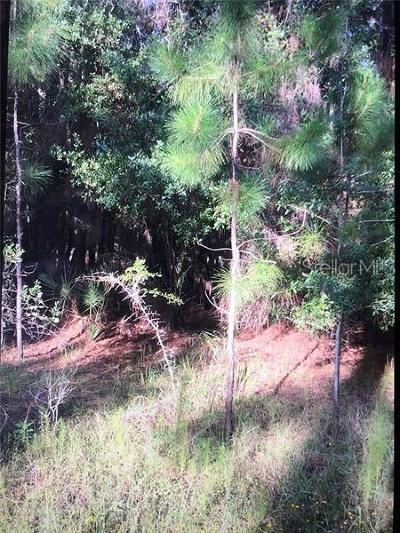 Wesley Chapel Residential Lots & Land For Sale: 0000 Thunderhead