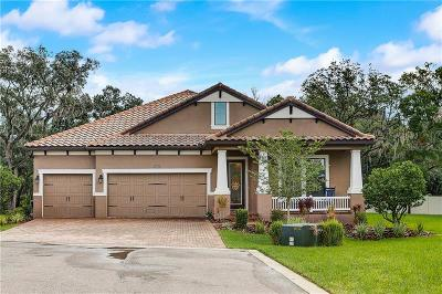 Tampa Single Family Home For Sale: 7861 Marsh Pointe Drive