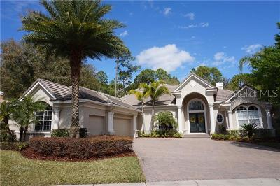 Westchase Single Family Home For Sale: 10722 Beagle Run Place