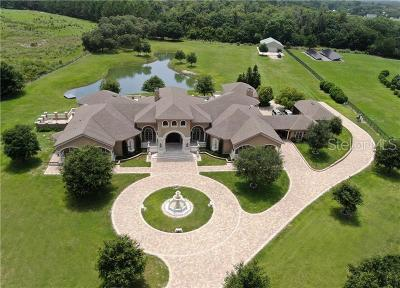 Odessa FL Single Family Home For Sale: $3,900,000