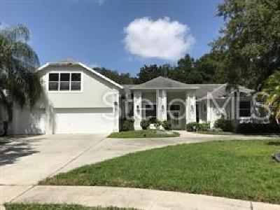 Valrico Single Family Home For Sale: 2512 Regal River Road