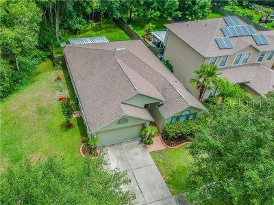 Tampa Single Family Home For Sale: 8202 Stockton Way