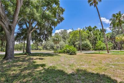 Tampa Residential Lots & Land For Sale: 505 S Royal Palm Way