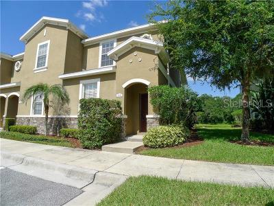 Plant City Townhouse For Sale: 2043 Greenwood Valley Drive