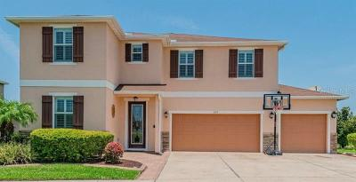 Apollo Beach Single Family Home For Sale: 230 Star Shell Drive