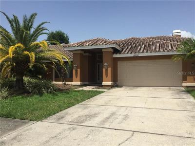 Hillsborough County Single Family Home For Sale: 5005 E Longboat Boulevard