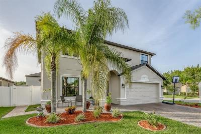 Trinity Preserve, Trinity Preserve Ph 1, Trinity Preserve Phase 1 Single Family Home For Sale: 12445 Eagle Chase Way