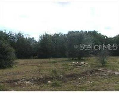 Dade City, San Antonio, Wesley Chapel, Brooksville Residential Lots & Land For Sale