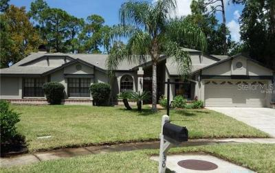 Oldsmar Single Family Home For Sale: 30 Windrush Court