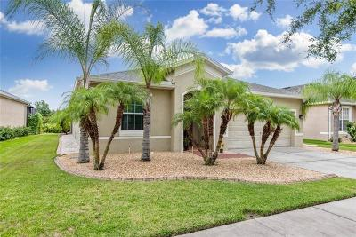 Tampa Single Family Home For Sale: 20215 Merry Oak Avenue