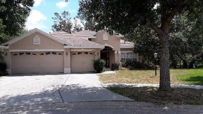 Spring Hill Single Family Home For Sale: 12922 Flamingo Parkway