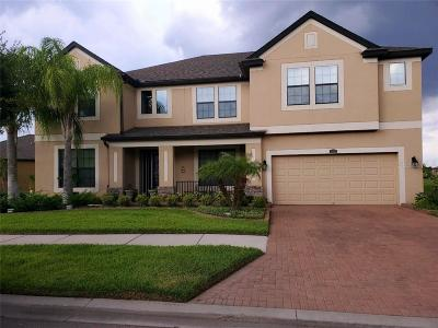 Riverview Single Family Home For Sale: 13328 Sunset Shore Circle