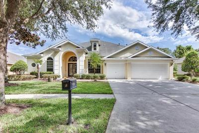Lithia Single Family Home For Sale: 15905 Sorawater Drive