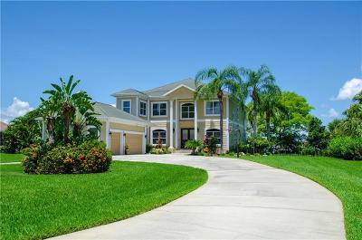 Apollo Beach Single Family Home For Sale: 428 Island Cay Way