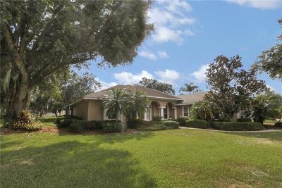 Winter Haven Single Family Home For Sale: 204 McLean Pt
