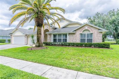Hillsborough County, Pasco County, Pinellas County Single Family Home For Sale: 17515 Edinburgh Drive