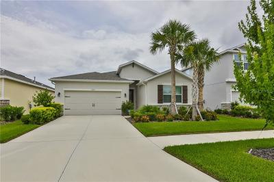 Apollo Beach Single Family Home For Sale: 6305 Shadowlake Drive