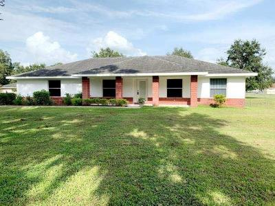 Plant City Single Family Home For Sale: 4713 Ever Lasting Trail