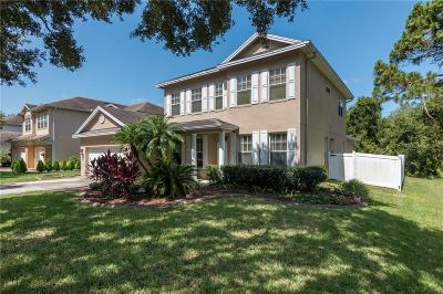 Tampa Single Family Home For Sale: 6101 Native Woods Drive