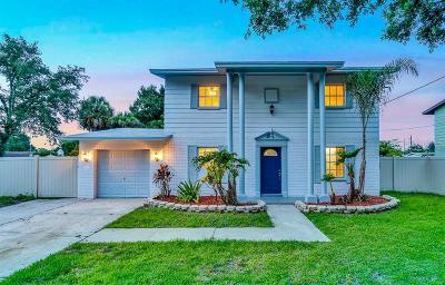 Tampa Single Family Home For Sale: 4925 Shetland Avenue