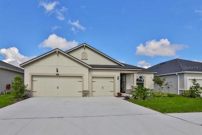 Riverview Single Family Home For Sale: 13405 Nimble Minke Place #159E