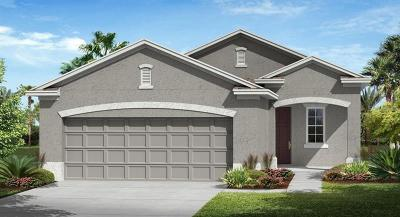 Lake County, Orange County, Osceola County, Seminole County Single Family Home For Sale: 3425 Sagebrush Street