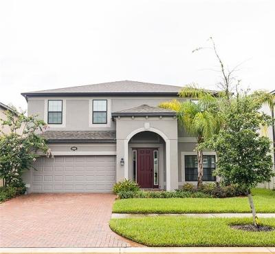 Tampa Single Family Home For Sale: 19506 Sea Myrtle Way