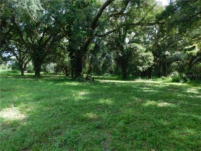Lithia Residential Lots & Land For Sale: 8704 Carey Road