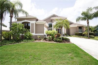 Apollo Beach Single Family Home For Sale: 6513 Surfside Boulevard