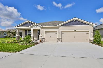 Riverview Single Family Home For Sale: 13409 Nimble Minke Place #161