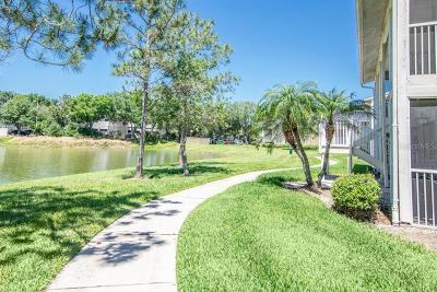 Brandon Rental For Rent: 209 Lake Brook Circle #107