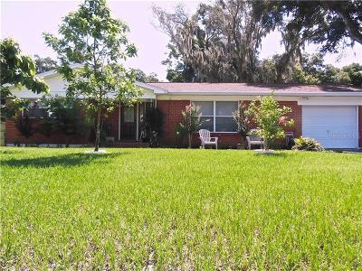 Seffner Single Family Home For Sale: 807 Margaret Drive