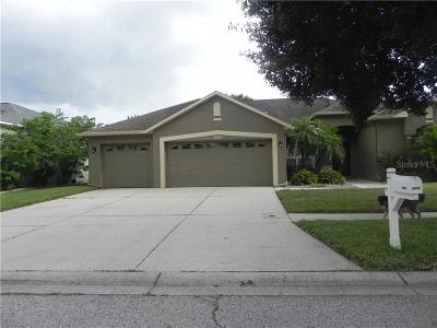 Riverview Single Family Home For Sale: 9258 Estate Cove Circle