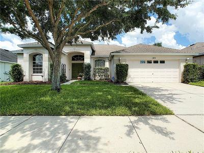 Riverview Single Family Home For Sale: 13654 Artesa Bell Drive