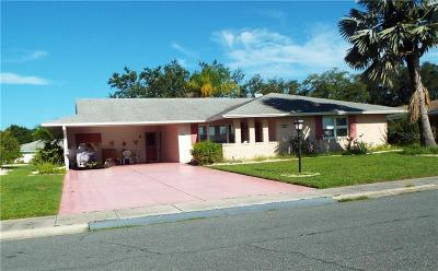 Hernando County, Hillsborough County, Pasco County, Pinellas County Single Family Home For Sale: 1230 Fordham Drive #28