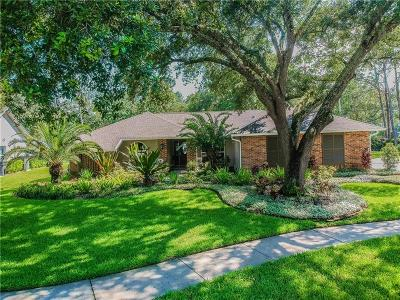 Tampa Single Family Home For Sale: 5203 Dwire Court