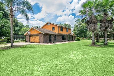 Dade City, San Antonio, Wesley Chapel, Brooksville Single Family Home For Sale: 38614 Clinton Avenue