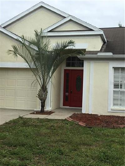 Wesley Chapel Single Family Home For Sale: 29643 Bright Ray Place