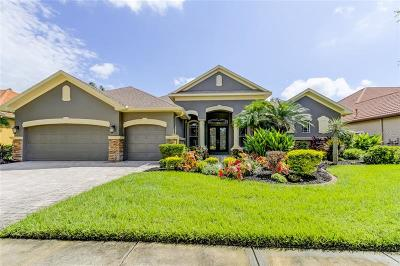 Pasco County Single Family Home For Sale: 1546 El Pardo Drive