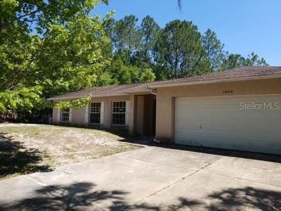 Lutz Single Family Home For Sale: 18018 Driftwood Lane