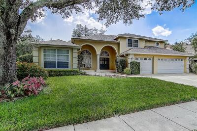 Hernando County, Hillsborough County Single Family Home For Sale: 7105 Wareham Drive