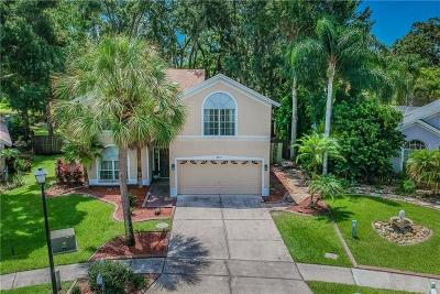 Tampa Single Family Home For Sale: 4637 Hidden Shadow Drive