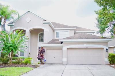 Tampa Single Family Home For Sale: 10143 Deercliff Drive