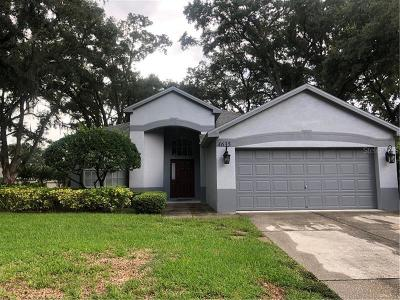 Tampa Single Family Home For Sale: 4635 Whispering Park Lane