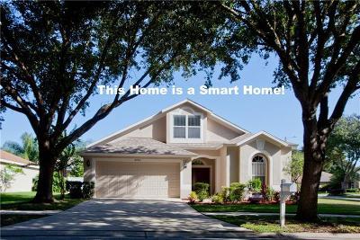 Valrico Single Family Home For Sale: 2720 Villa Drive