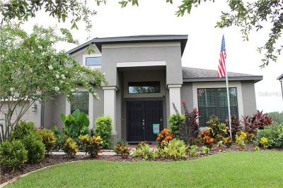 Tampa Single Family Home For Sale: 10614 Mistflower Lane