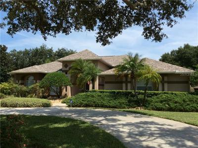Odessa Single Family Home For Sale: 17624 Lake Key Drive