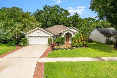 Tampa Single Family Home For Sale: 15113 Bald Eagle Street