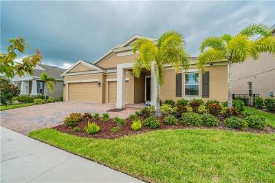 Apollo Beach Single Family Home For Sale: 6115 Shadowlake Drive